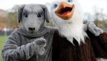 Gilman Greyhound & McDonogh Eagle